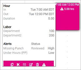 Time Card Alert Details 2 Image